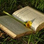 Los libros siempre estarán presentes