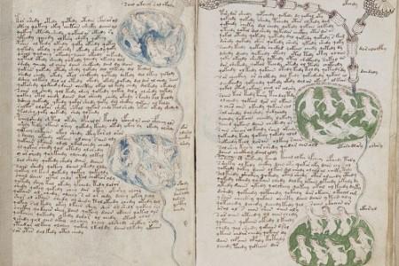 El enigmático Manuscrito Voynich