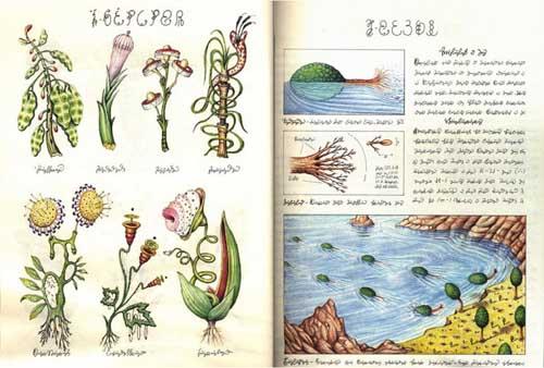 Codex seraphinianus 02